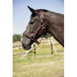Halster, nylon, voor trekpaard