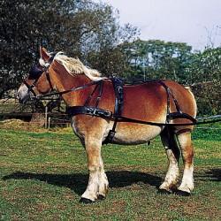 Tuig voor trekpaard